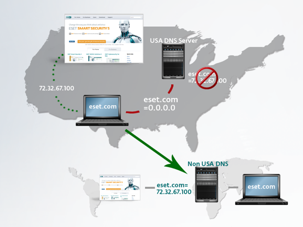 ESET DNS info graphic