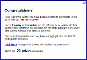Internet survey scam
