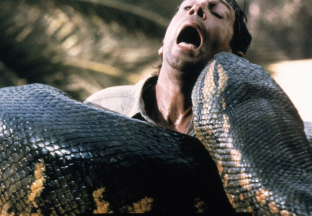 Giant snake swallows zookeeper! Facebook scam spreads via offer of gruesome video