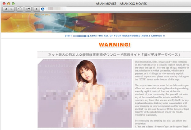 Hacked Japanese porn sites spread banking malware attack
