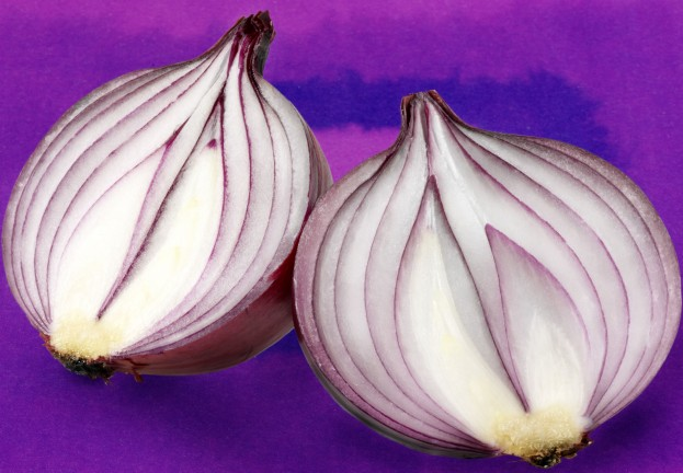 "Online privacy fears as Tor rushes to fix ""uncloaking"" bug"