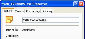 Executable file properties