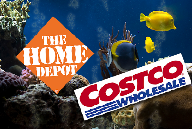 Cyber Monday: Costco and Home Depot phishing emails target shoppers