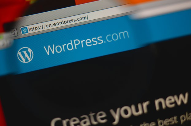 Zero‑day exploit affects popular WordPress plugin