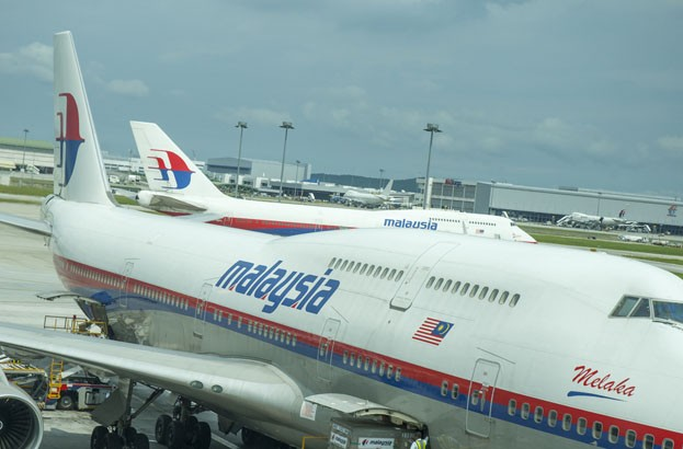 Lizard Squad hits Malaysia Airlines website