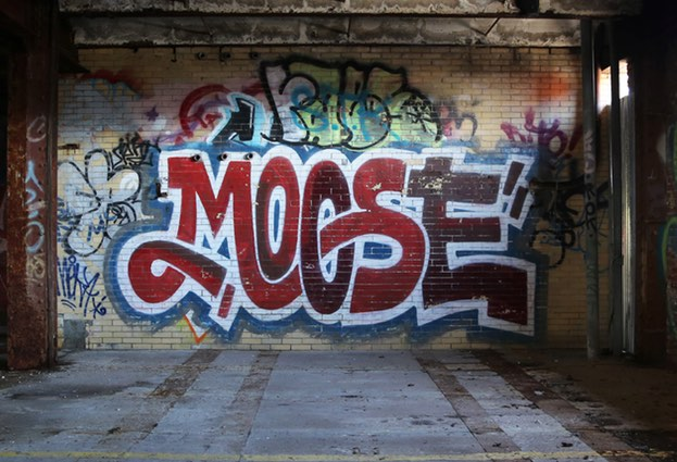 Moose – the router worm with an appetite for social networks