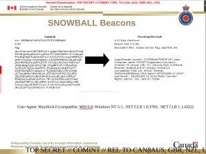 4_SNOWBALL_BEACON