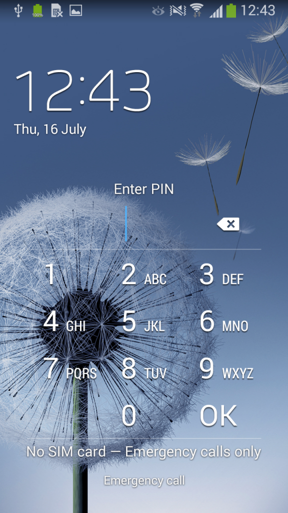 Figure 3: PIN lock screen