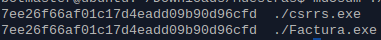 md5 hashes iguales