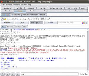 Burp Suite Free Edition Projekt