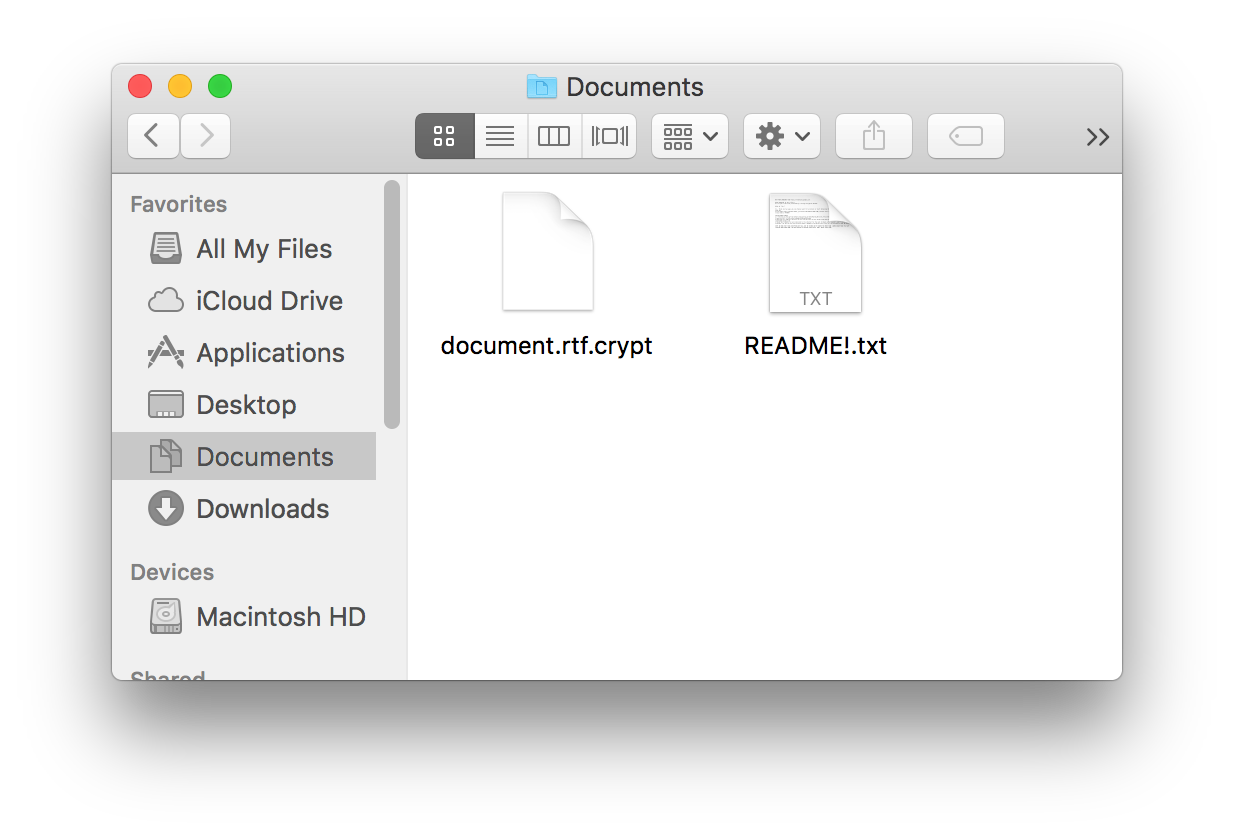 Figure 4 - Encrypted document and README!.txt as they appear in Finder