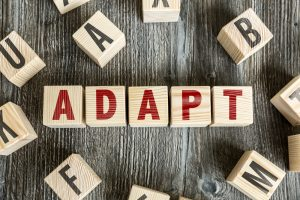 letter blocks - adapt