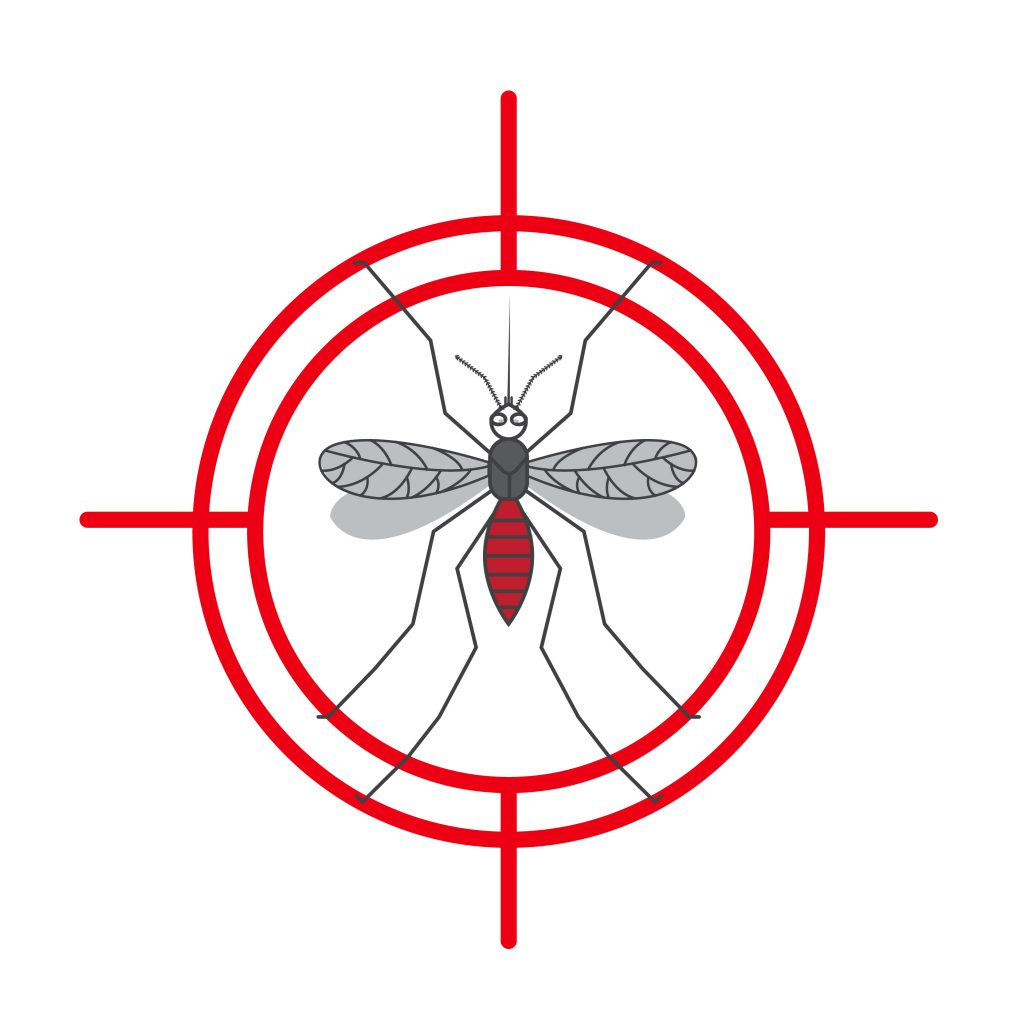 Turla Mosquito: A shift towards more generic tools | WeLiveSecurity