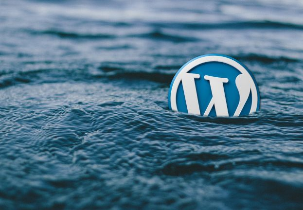 WordPress.com Survives DDOS Attack