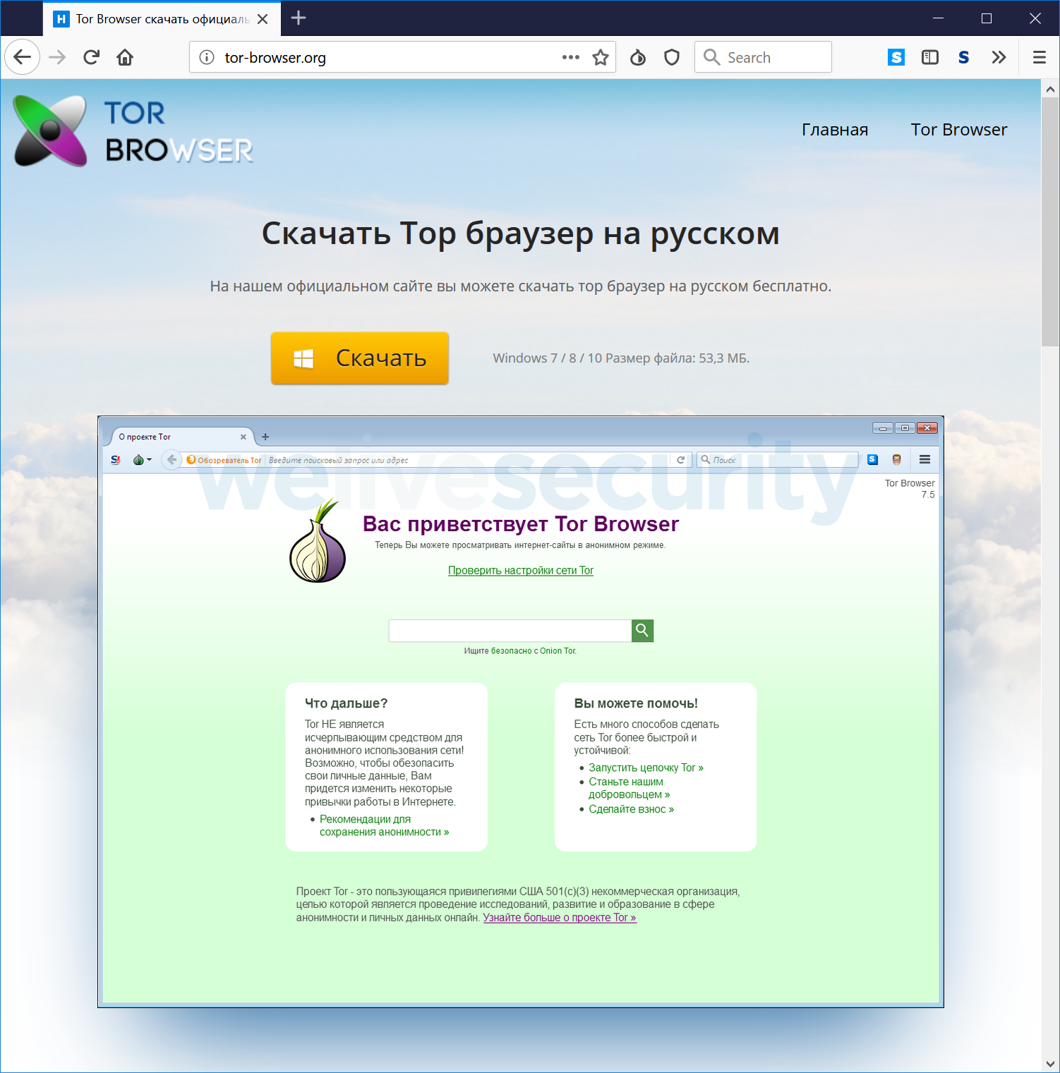 flash player в tor browser hyrda
