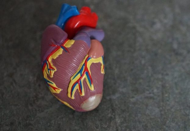 Securing medical devices: Can a hacker break your heart?